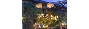 Une terrasse toute en verdure Jolie terrasse végétalisée d'une pizzeria Parisienne